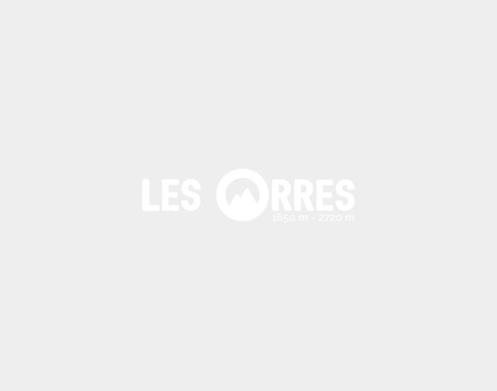 logo-web-95